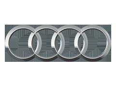 Audi Body Clips