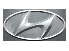Hyundai Auto Body Clips