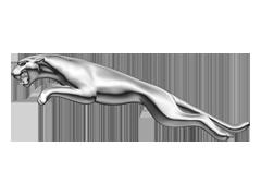 Jaguar Auto Body Clips