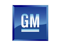 GM Auto Body Clips